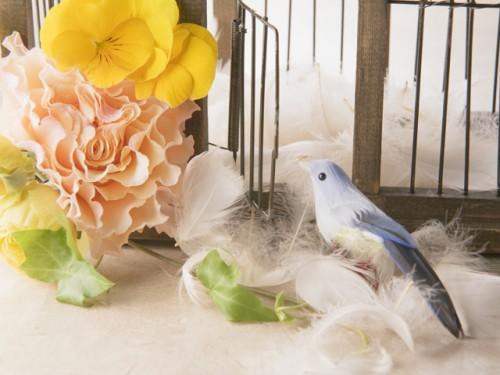 富士市で結婚相談所をお探しならマリアージュたちばなへご連絡下さい。静岡県富士市伝法に紹介所がございます。
